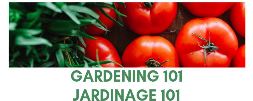 Atelier 2 - Jardinage 101